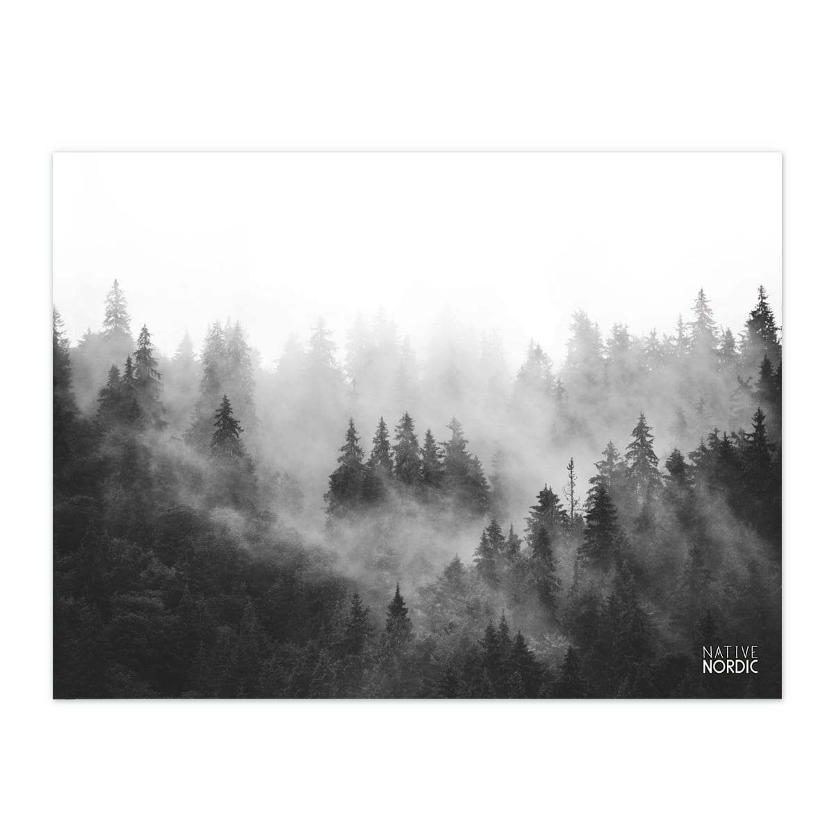 Misty Forest Plakat