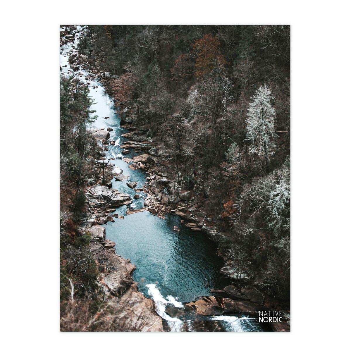 Chill Forest plakat MTB fotokunstplakat fra Native Nordic